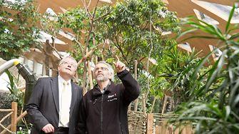 Walter Stampfli (Henkel) und Robert Zingg (Zoo Zürich) begutachten das fertiggestellte Dach des Elefantenhauses.